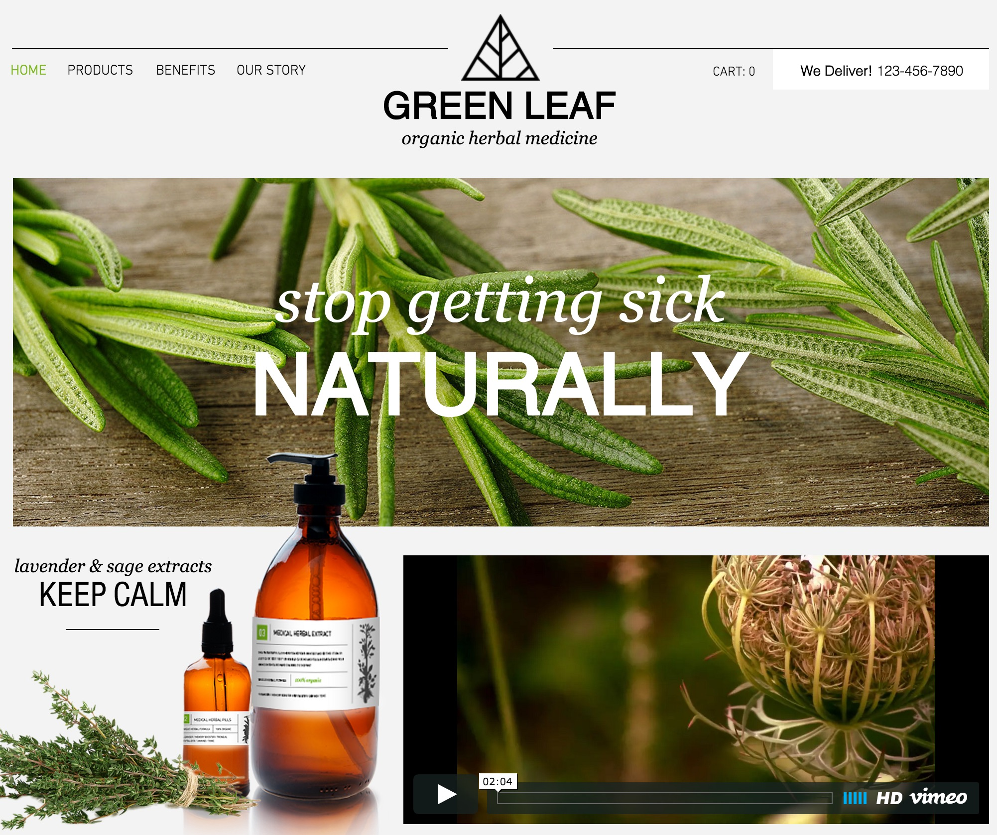 Herbal Shop Template