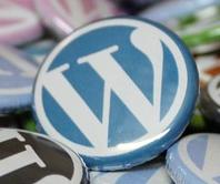 Learn WordPress WBI