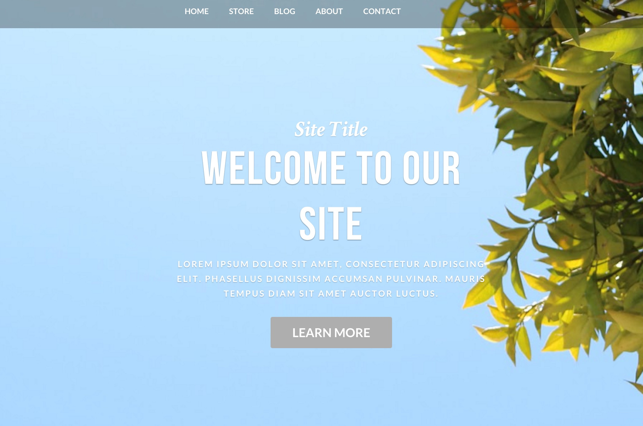 63 weebly templates and designs for advanced websites for Weebly pro templates